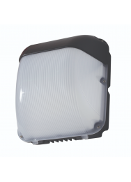 FALCON LED 5500K IP65 ZWART