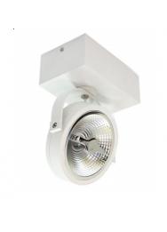 LED OPBOUW KARDAN AR111 1,2 EN 3 -LICHTS