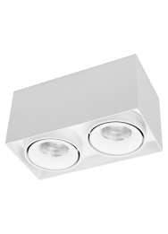 Opbouw Downlighter Caja Led 2-lichts